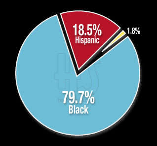 Race of Victim   Chicago Homicides & Murders