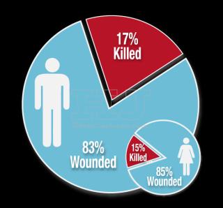 Chicago homicides by gender 2014