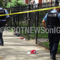 Chicago Homicide: 8100 S Manistee